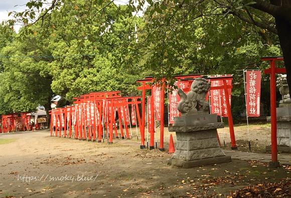 於菊稲荷神社のたくさんの鳥居