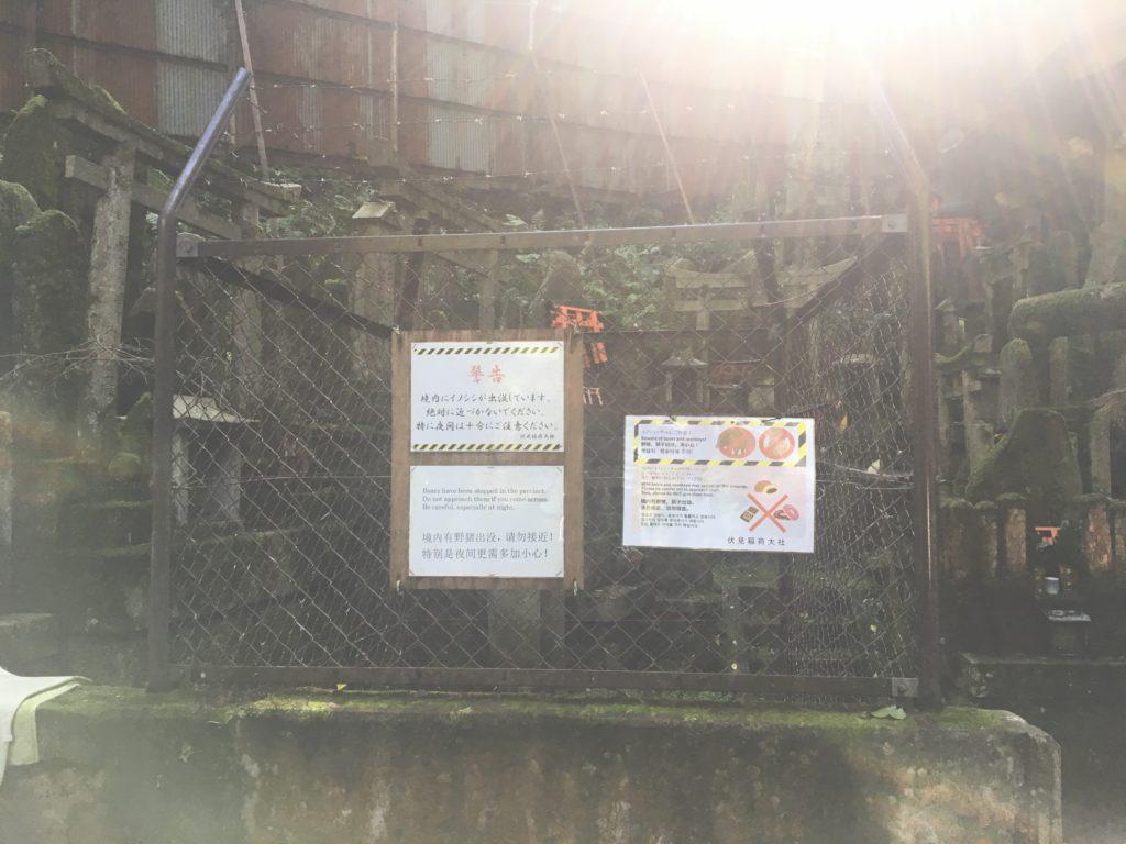 清滝社のイノシシ注意の看板